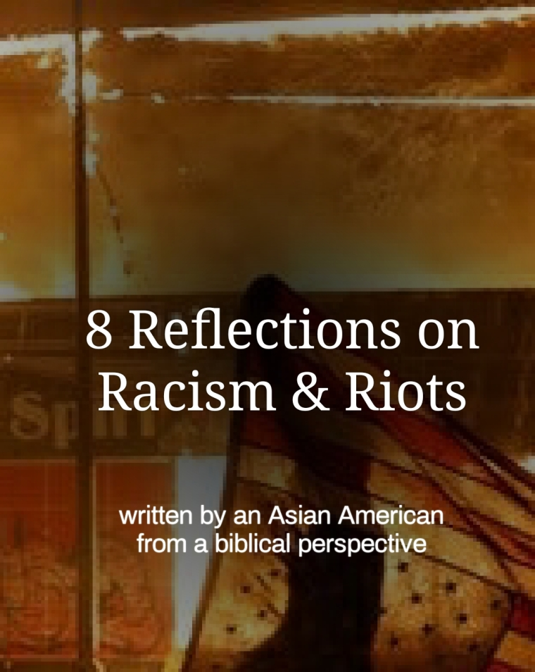 8 Reflections on Racism & Riots by Brian G. Najapfour